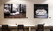 Cars and Roses Decor
