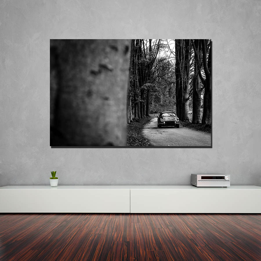 Wall Decorative Photographs Porsche 911