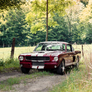 Shelby GT350 Photograph