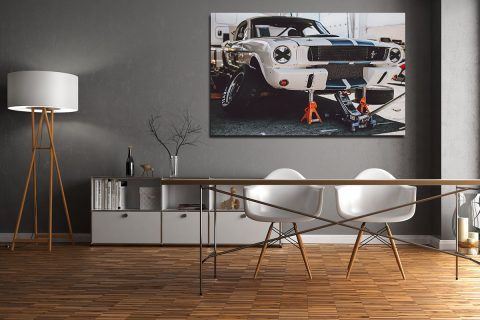 Ford Mustang Photographs