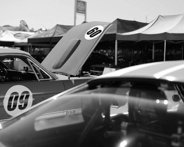 Photo Car Print Mustang