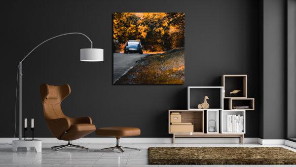Porsche 911 Photograph Autumn