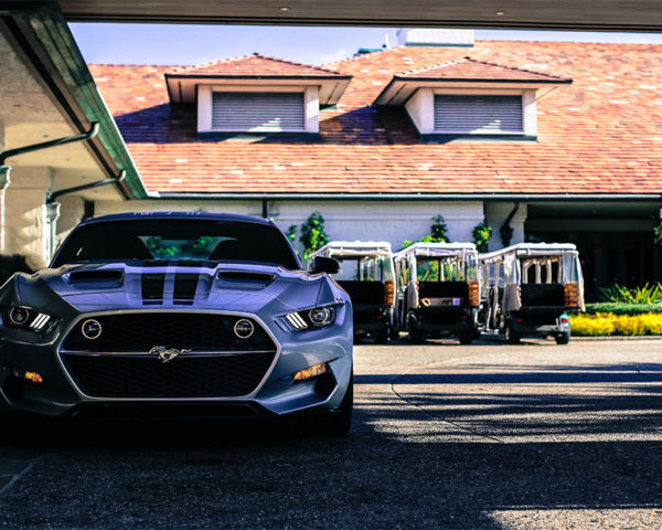 Wall Photograph Ford Mustang