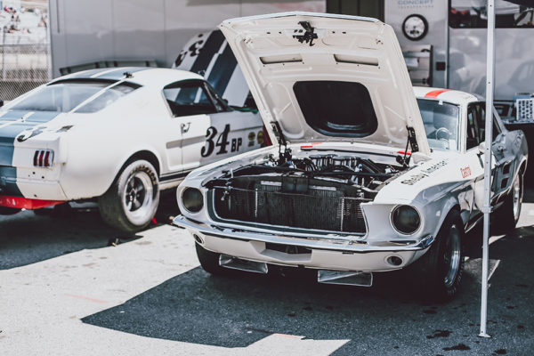 Photograph Race Ford Mustang